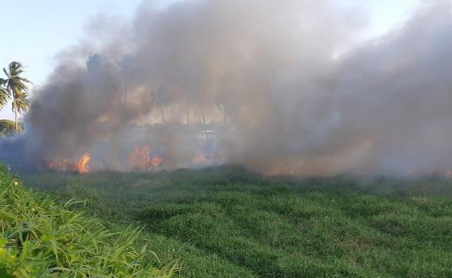 Incêndio atinge vegetação em terreno de granja, no bairro Guajiru