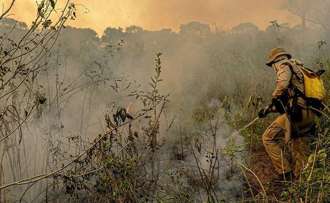 Combate ao fogo na Amazônia e Pantanal teve atraso de quatro meses