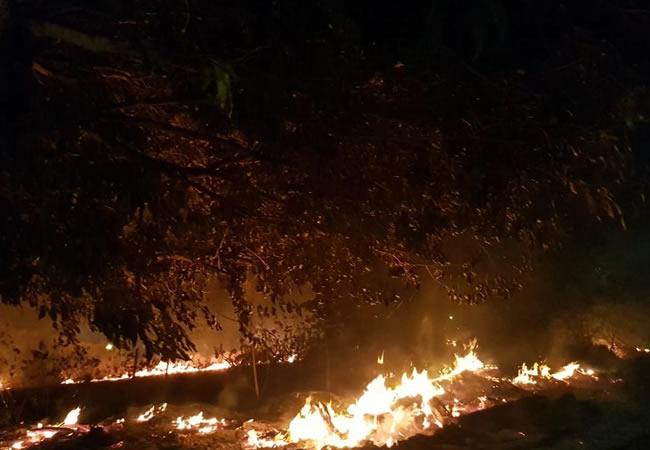 Fogo atinge vegetação em terreno e chega próximo à casa de veraneio na Praia do Porto das Dunas