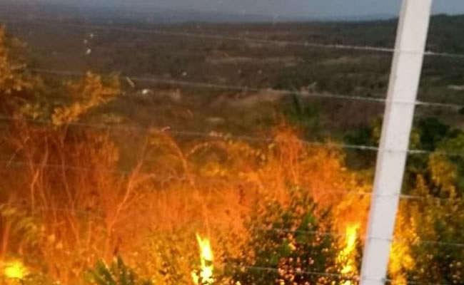 Área de vegetação é atingida por incêndio em bairro do município de Barbalha, no Ceará